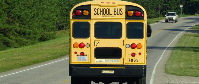 School bus - two lane road - Xzelenz Media